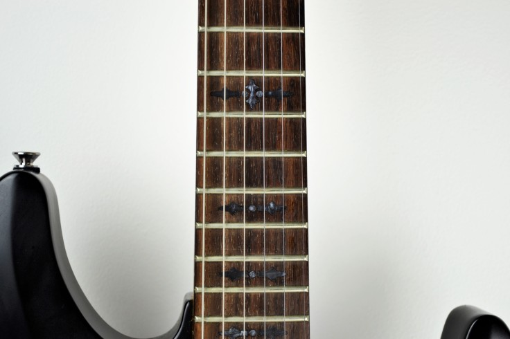 schecter guitar inlay